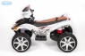 Детский квадроцикл Quad Pro BARTY с пультом ДУ